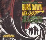Burndown007